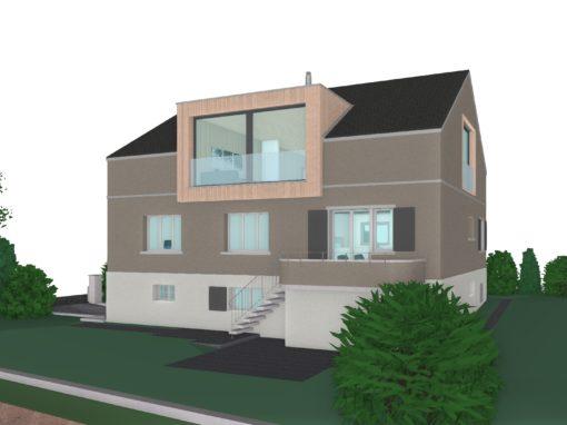2018 Muri – Umbau – Projekt Einfamilienhaus