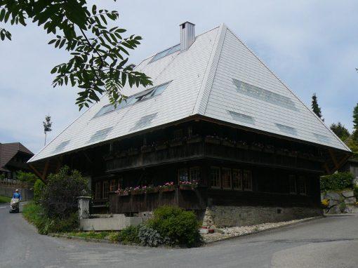 2006 Oberwil – Umbau Dachausbau Hochstudhaus